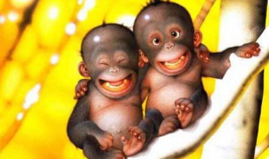 скачать игру веселая обезьянка бесплатно - фото 2